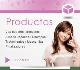 Acerca de nuestros productos Alisado JaponĂŠs / Tratamientos / ChampĂşs